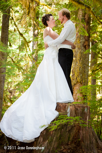 mount-rainier-wedding-9
