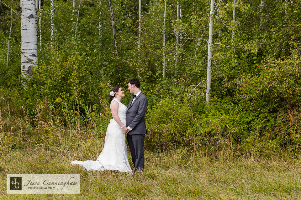 jesse_cunningham_mountain_springs_lodge_wedding-017