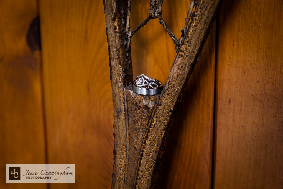 jesse_cunningham_mountain_springs_lodge_wedding-021
